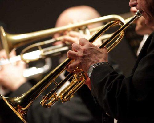 Residenz-Orchester-Startseite-Orchester